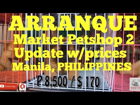 ARRANQUE MARKET PETSHOP 2 UPDATED W/PRICES MANILA PHILIPPINES. #29