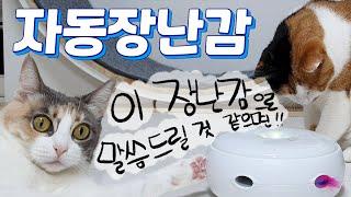 너무 바빠 놀아줄 수 없을 땐?! 자동장난감 (feat…
