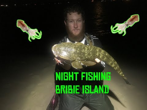 Night Fishing For Flathead And Squid - Bribie Island EP. 009