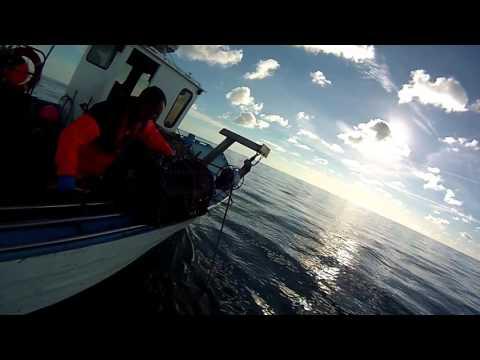Lobster Fishing Jersey