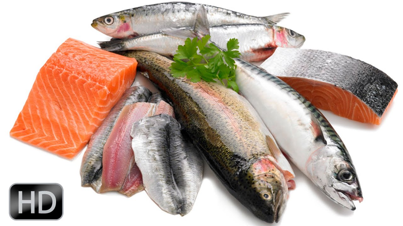 Mejores pescados para dieta tr4iner youtube for Fish rich in omega 3
