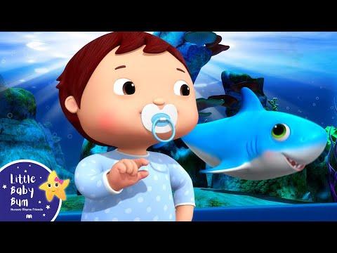 Ba Shark Dance  BRAND NEW!  Little Ba Bum Nursery Rhymes & Kids Songs  Songs for Children