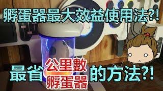 【Pokémon GO】孵蛋器最大效益化?!(最少公里數/孵蛋器孵出最多寶可夢?!)
