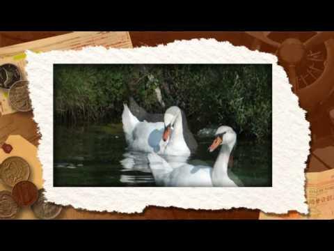 Diashow NATUR I TUR U NATUR+LABUDPERICA IZENICA PLIVJUUUH ROXIO FETGRIL20120715