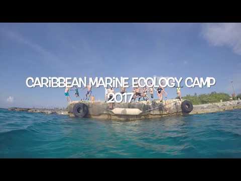 Caribbean Marine Ecology Camp 2017