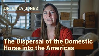 The Dispersal of the Domestic Horse into the Americas | Dr. Emily Jones