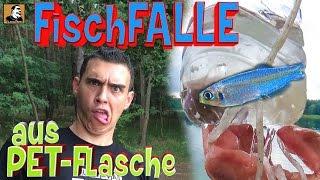 """""""Survival Mattin"""" baut aus einer PET-Flasche eine FISCHFALLE fängt Fisch und überlebt nur knapp."""