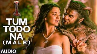 'Tum Todo Na (Male)' FULL AUDIO Song 'I'   Aascar Films   A. R. Rahman   Shankar, Chiyaan Vikram