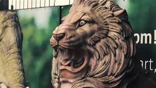 Heropening van de Olmense Zoo | HD