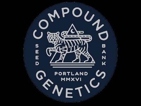 Compound Genetics, Ricky Palomino, and James Bean!!!