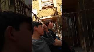 Vlog with panda adapt gamez