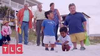 The Kleins Help Rescue Sea Turtles   The Little Couple