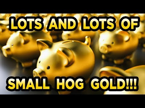 Dirt Hogg 1lb Bag Gold Paydirt Review (DirtHoggPaydirt.com)