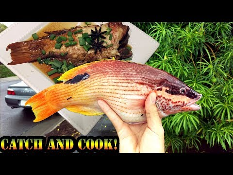 A'awa (Hawaiian Table Boss) Fishing Catch And Cook!