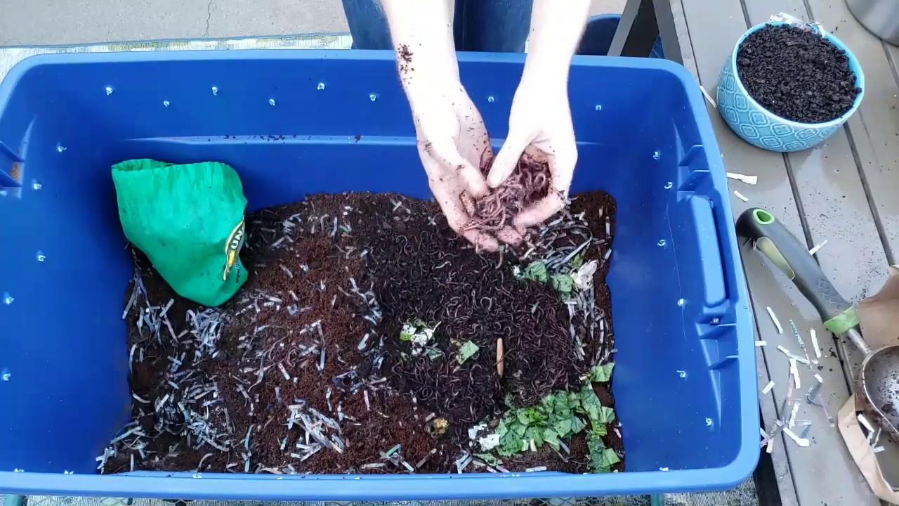 Komposting with Klaudia