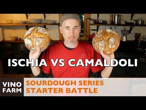 Sourdough Battle - Ischia vs. Camaldoli - 4K Italia! 🇮🇹