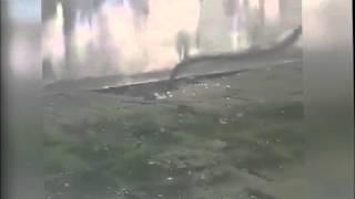 Spitalul Judetean Pitesti  SOBOLANI (sursa video Mediafax.ro)