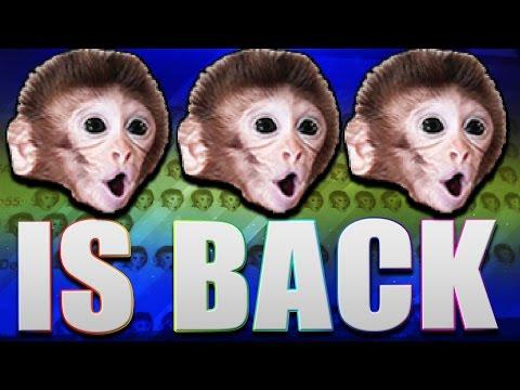 POG CHIMP IS BACK!