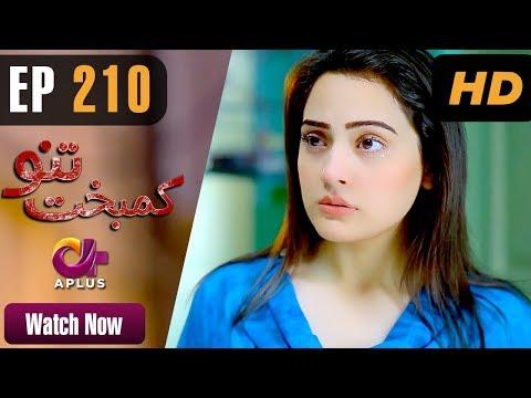 Kambakht Tanno - Episode 210 - Aplus ᴴᴰ Dramas
