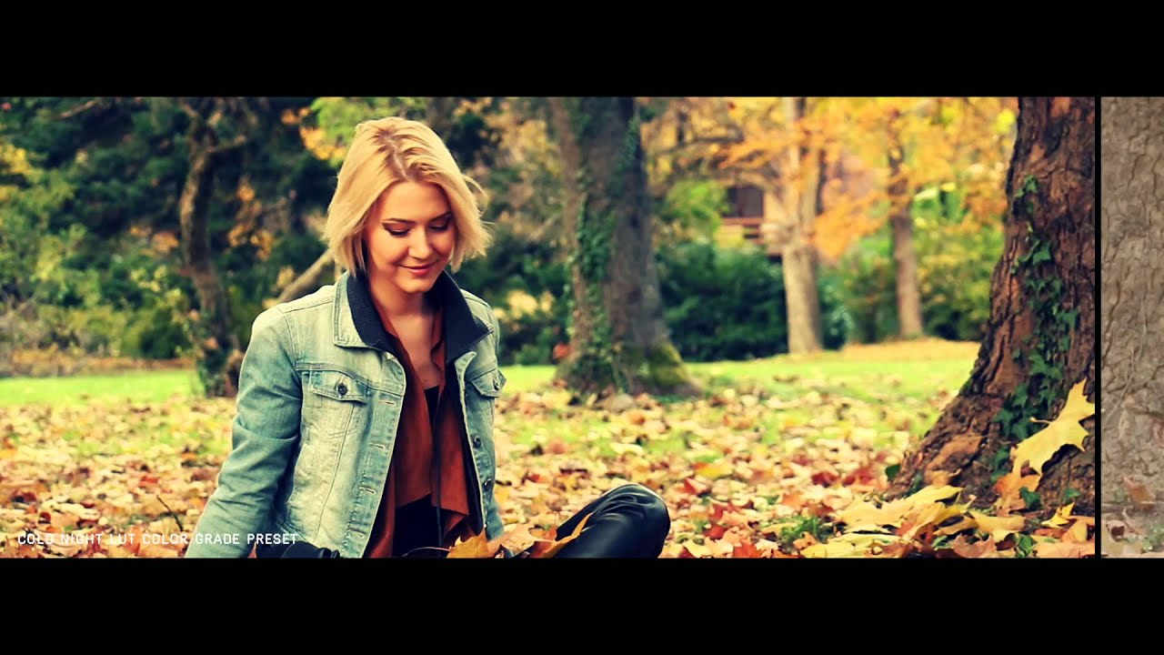 687a4fd003 Pixel Film Studios - FCPX LUT: Fall - Autumn Look-Up Tables - Final Cut Pro  X FCPX