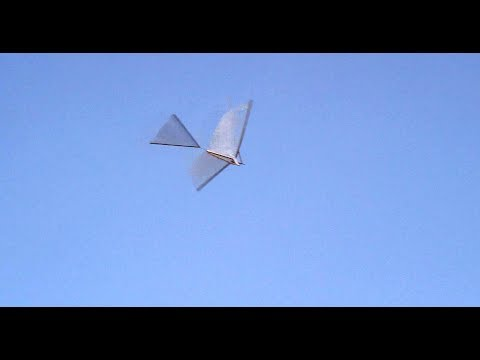 The Original and Best DIY Ornithopter Freebird How to Build