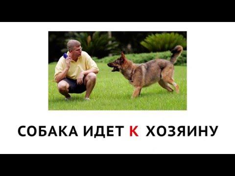 Время говорить по-русски::Уроки