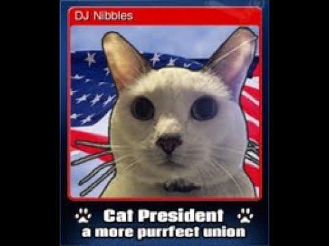 Cat President: DJ NIBBLES!!!! Ep 1