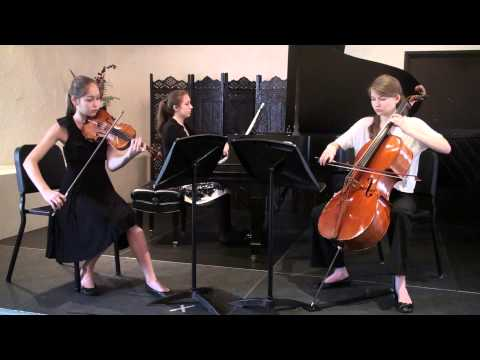 Beethoven Trio for Piano, Violin & Cello