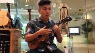 Kamaka HF-3D2I Tenor Sound Sample
