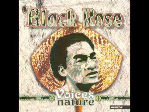 Black Rose - Teivovo