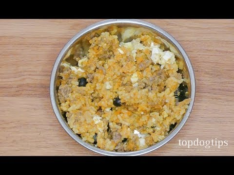 Homemade Senior Dog Food Recipe - YouTube