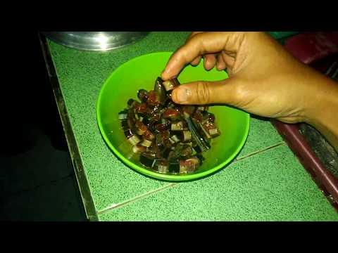 Belajar Mancing #10 Belut untuk Umpan Mancing Lele | Eels as Catfish Bait