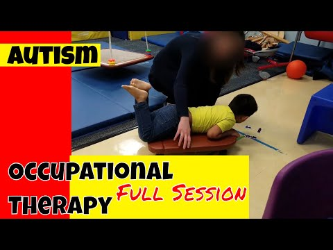 Autism Occupational Therapy Session (1 hour)