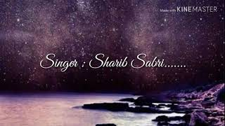 Aaj ro len de full HD lyrics video song   Sharman Joshi   Meera Chopra