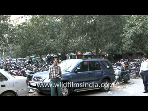 Local parking system in Delhi
