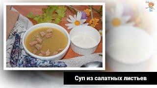 Суп пюре из салатных листьев фаворит среди летних супов — настоящая деревенская полезная еда!