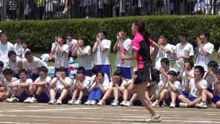 2016体育祭 東京立正中学校 東京立正高等学校