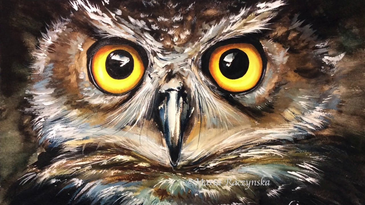 watercolor owl painting demonstration youtube