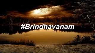 BRINDHAVANAM KAYDEE feat RAJ PIRATE