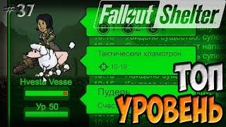 МАКСИМАЛЬНЫЙ УРОВЕНЬ Fallout Shelter Симулятор убежища 37