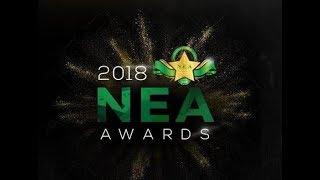 NIGERIAN ENTERTAINMENT AWARDS 2018 Featuring CHARLES OKOCHA & More (FULL RECAP)