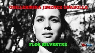 Gaviota traidora - Flor Silvestre