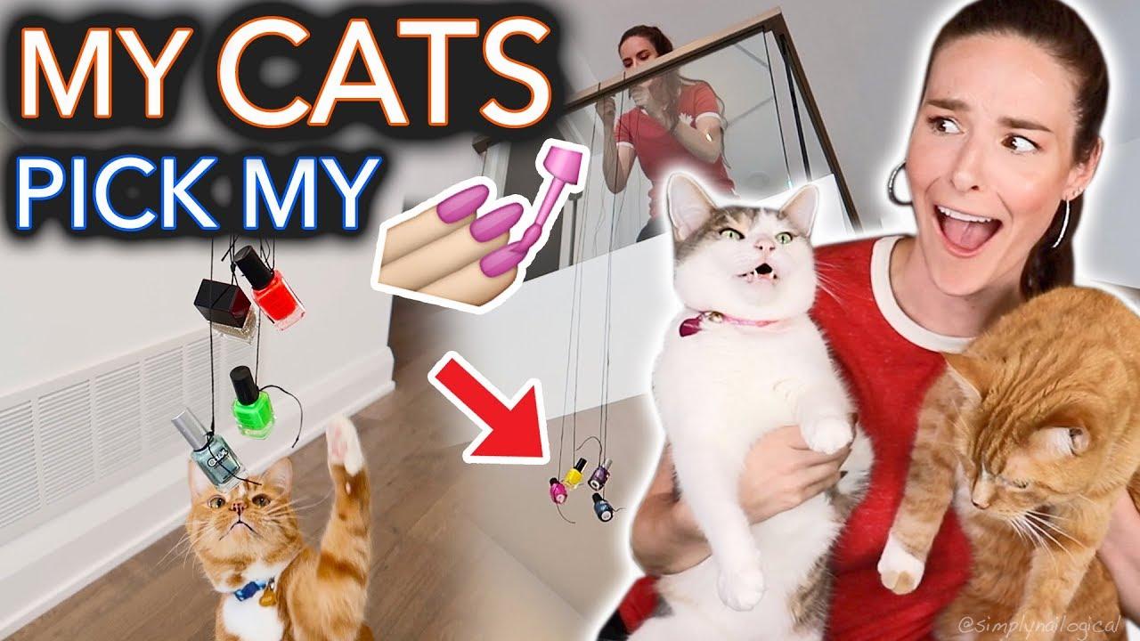 my-cats-pick-my-nail-polish-extreme