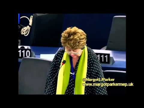 Child migrants shipped into Europe disappearing into the drugs and sex trade - Margot Parker MEP