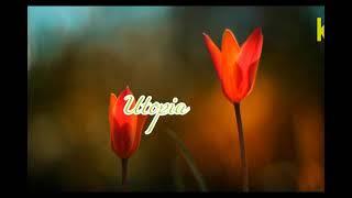 kumpulan lagu lagu UTOPIA full album