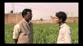 Matar ki unnat kheti Hindi Access Madhyapradesh
