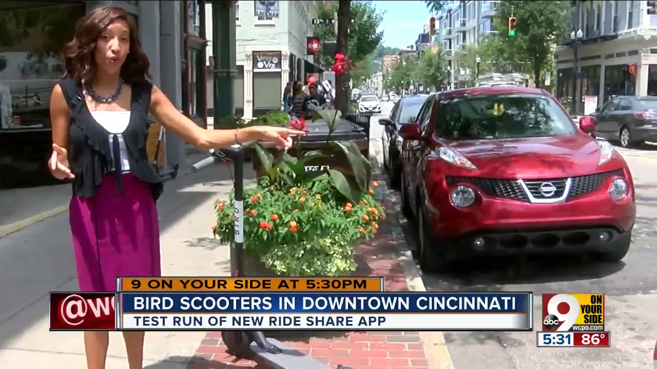 Rentable electric Bird scooters pop up Downtown overnight