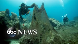 Coral reef rescue, summer solstice celebrations: World in Photos, June 21