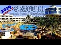 Seagull Beach Resort 4*  Hurghada 2019 / Через 1 год