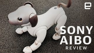 Sony Aibo Review: New dog, new tricks